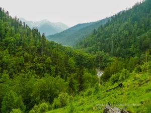 """Вид на реку Солзан и хребет """"Хамар-Дабан"""""""